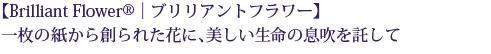 【Brilliant Flower®|ブリリアントフラワー】